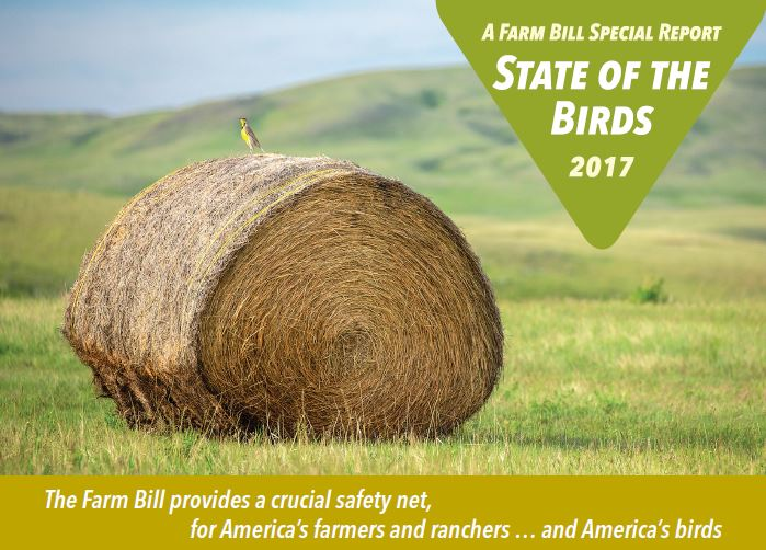 State of the Birds 2017