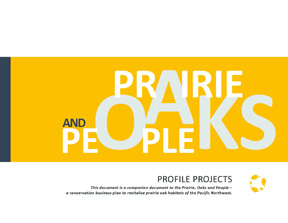 Prairie Oaks and People profile projects cover v100517 (72ppi 4x3)